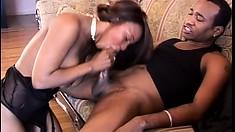 Voluptuous ebony babe with splendid big tits Vida Valentine is a sucker for black cock