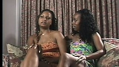 A pair of pretty black girls flash their perky titties on the couch