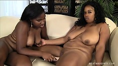 Big, floppy tit ebony lesbians lick a little pussy and toy the hole