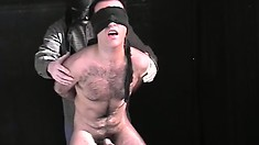 Blindfolded guy gets his ass teased and is made to suck a dick