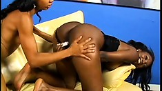 Tight-bodied horny black lesbians fuck each other's brains out